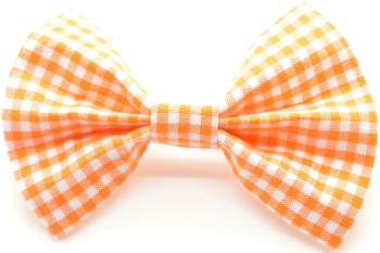 Orange Gingham Bow Tie (DO-ORANGEGINGHAMBOW)