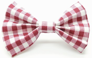 Maroon Gingham Bow (DO-MAROONGINGBOW)