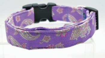 Purple Paisley Collar (DO-PRPLPSLY)