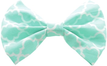 Aqua Quatrefoil Bow Tie (DO-AQQUATBOW)